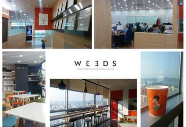Weeds Korea}