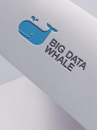 Big Whale Data
